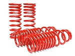 SKUNK2 LOWERING SPRINGS 1990-93 ACURA INTEGRA