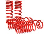 SKUNK2 LOWERING SPRINGS 1988-91 HONDA CIVIC / CRX