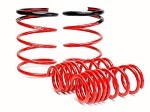 SKUNK2 LOWERING SPRINGS 2002-04 ACURA RSX