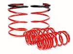 SKUNK2 LOWERING SPRINGS 2005-06 ACURA RSX