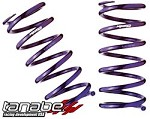 Tanabe NF210 Lowering Springs - 1996-2000 Honda Civic Coupe/Sedan